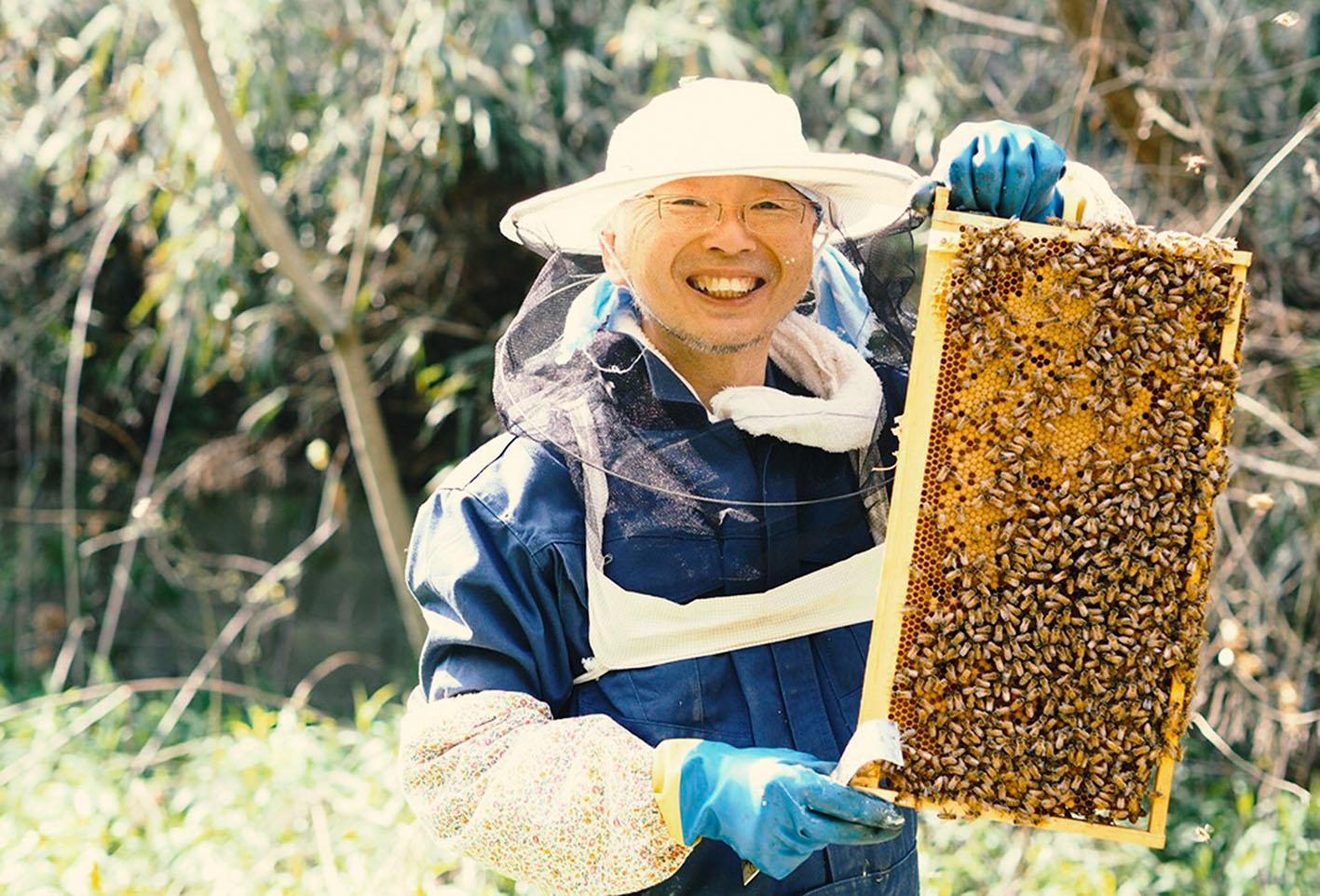 【募集終了】りんご園で受粉体験&ハニーさんのミツバチ教室